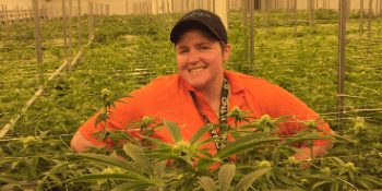 Interested in a Career in Cannabis? Discover the Skills and Requirements to Get Started Today!