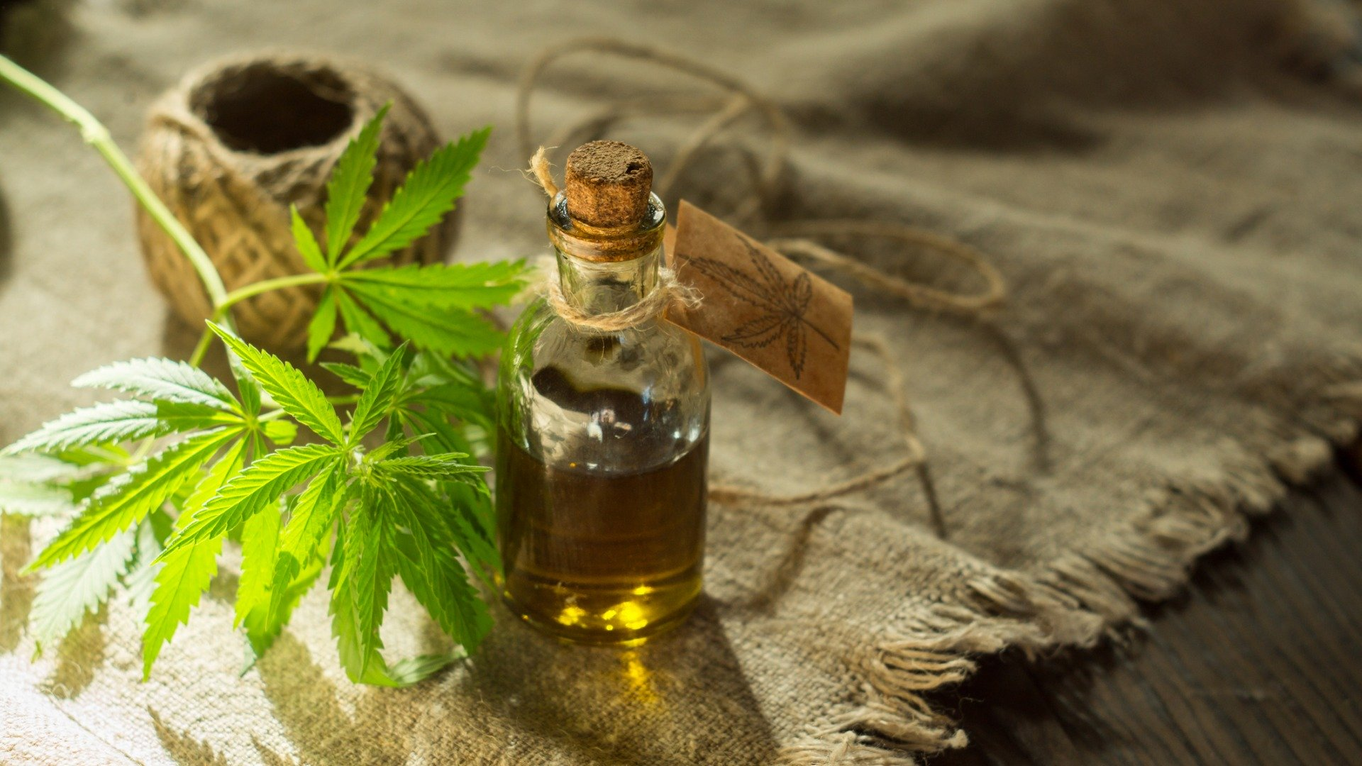 What are Cannabis Tinctures and How to Use Them